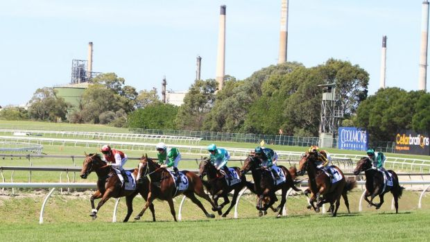 Short odds: Earthquake takes the Reisling Stakes at Rosehill.
