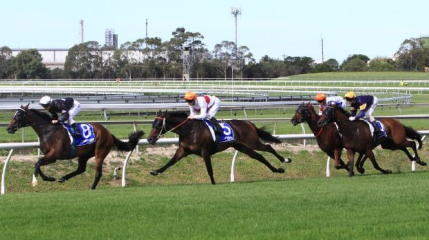 Hawkes triumph: Messene, ridden by James McDonald, wins the sixth race at Rosehill.