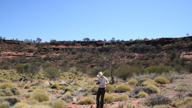 Astrophysicist Tui Britton in a meteorite impact crater discovered in Palm Valley in Northern Territory.