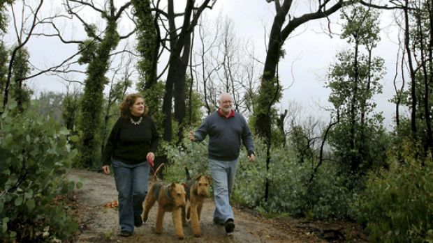 Ron and Anne Sorraghan walk their dogs on their burnt-out property at St .Andrews.