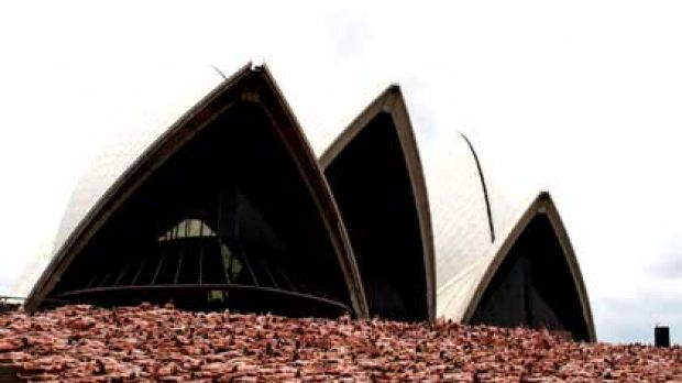 Thousands stripped for photographer Spencer Tunick at Sydney Opera House this morning.