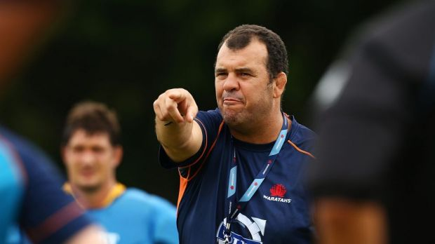 Best option: Waratahs coach Michael Cheika.