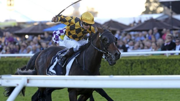 It's A Dundeel triumphed in Sydney's richest race, the $4 million Queen Elizabeth Stakes, at Randwick in 2014.