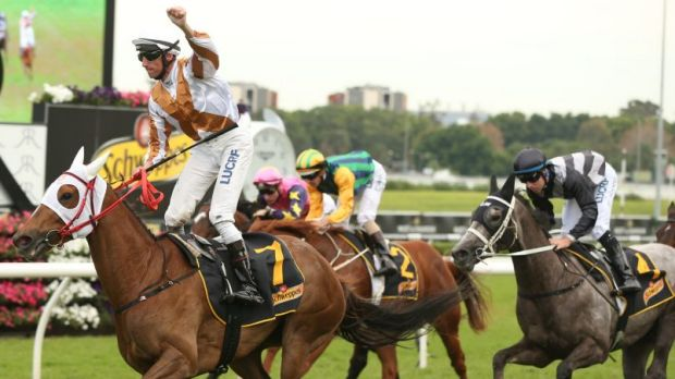 International flavour: Japanese mare Hana's Goal wins the All Aged Stakes at Randwick last Autumn. Another four Japanese ...
