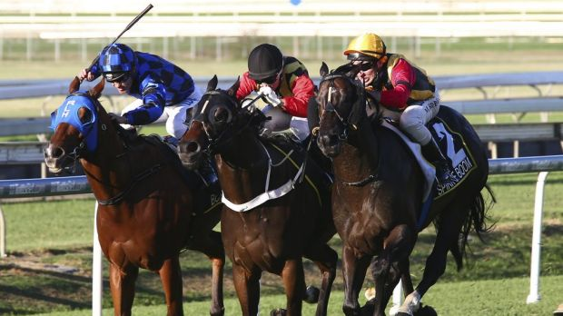 The Doomben track was declared unsafe for racing.