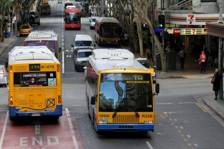 Free fare days have cost ratepayers more than $3.5 million