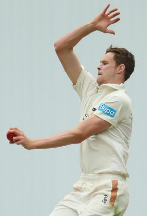 Jason Behrendorff, pictured here in action for WA last season, is tipped for higher honours after ripping through ...