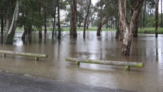 Flooding in the area of the proposed Cannon Hill golf course.