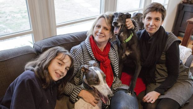 Companions: (From left) Maya Gibbon with her greyhound Opie, Dee Gibbon, and Sid with owner Cindy Daley.
