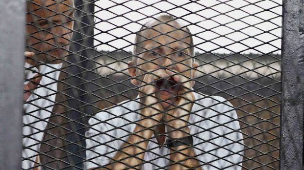 The harsh sentence against Peter Greste and his Al Jazeera colleagues seems to be more about the complex political ...