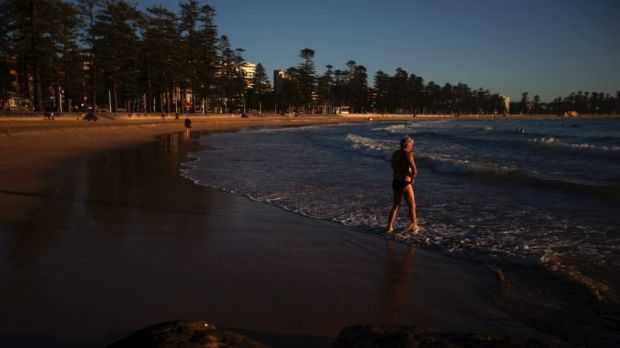 The shark nets at Manly Beach are blamed for 'indiscriminately catching and trapping a lot of marine life'.