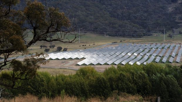 The solar energy farm at Royalla in Canberra's south.