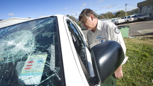 Vandalism by animal activists on ACT Government property will cost taxpayers thousands.