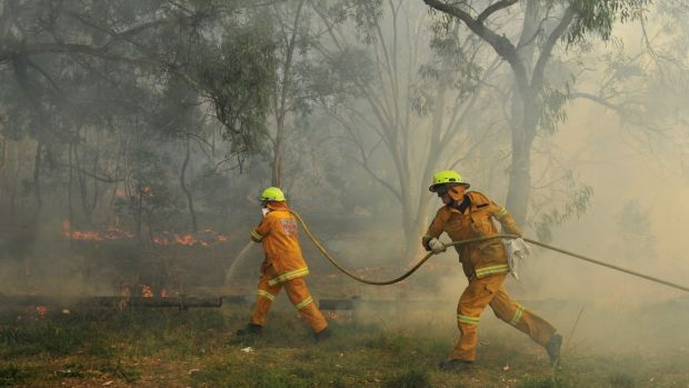 Bushfire numbers in the ACT dropped over the past year compared with the previous period.