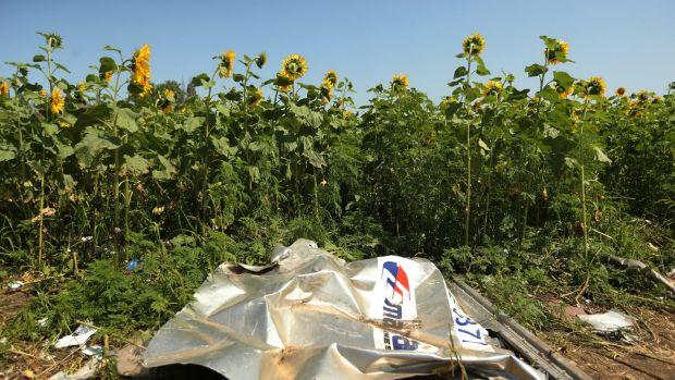 Plane debris at the crash site in eastern Ukraine.