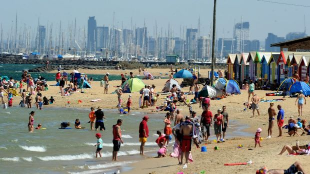 Melbourne's beaches might soon be looking more like this.