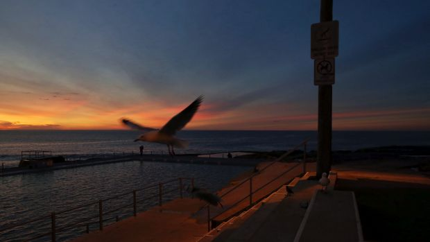 Dawn at Dee Why as warm weather continues this winter.