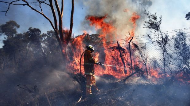 Fires last week at Castlereagh: Another early fire season is expected.