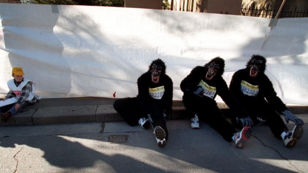 Monkey madness: Rob, Paul and Michael Stanley-Jones stretch during the 1997 City2Surf.